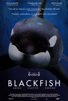Blackfish – Fúria Animal
