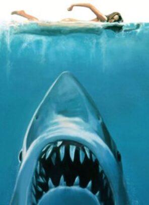 Tubarão, um gigante do mar e das telas